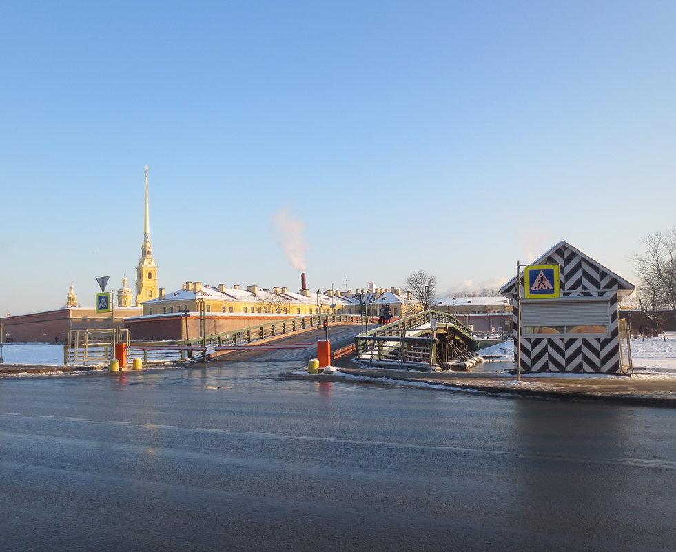 у Кронверкского моста - Елена