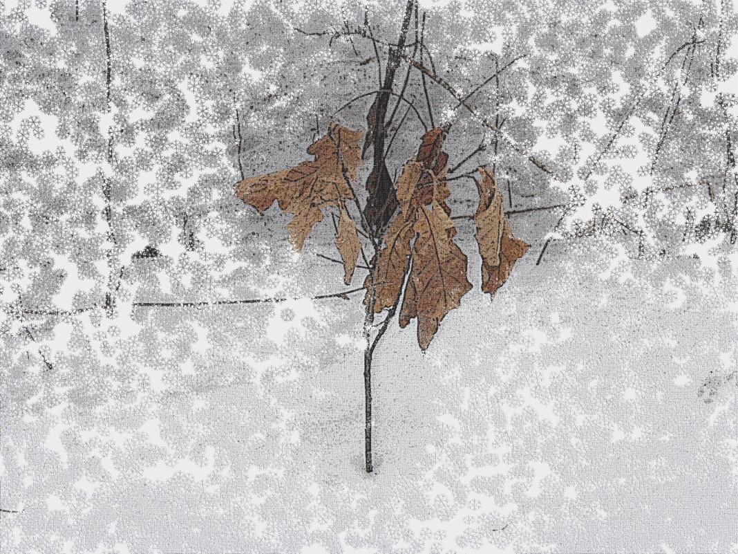 природа зимой - Юлия Денискина