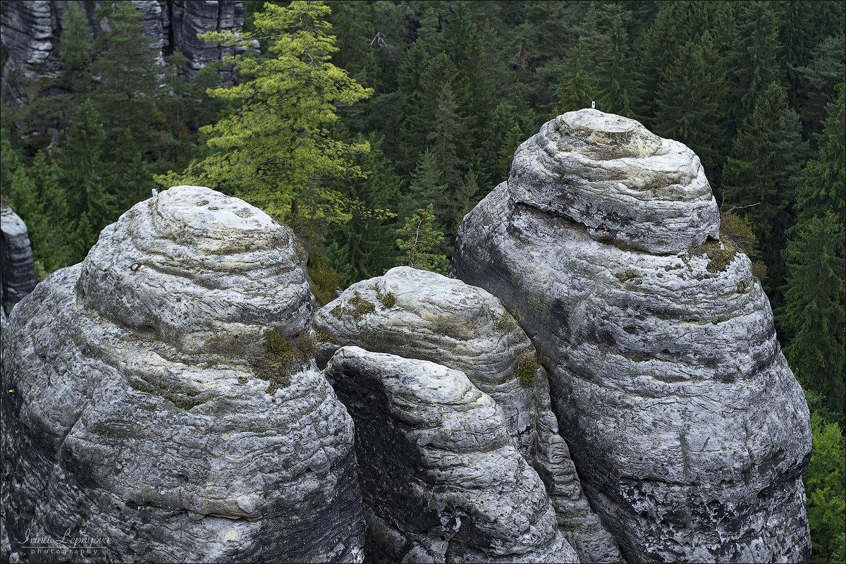Скалистые горы заповедника Бастай в Германии - Ирина Лепнёва
