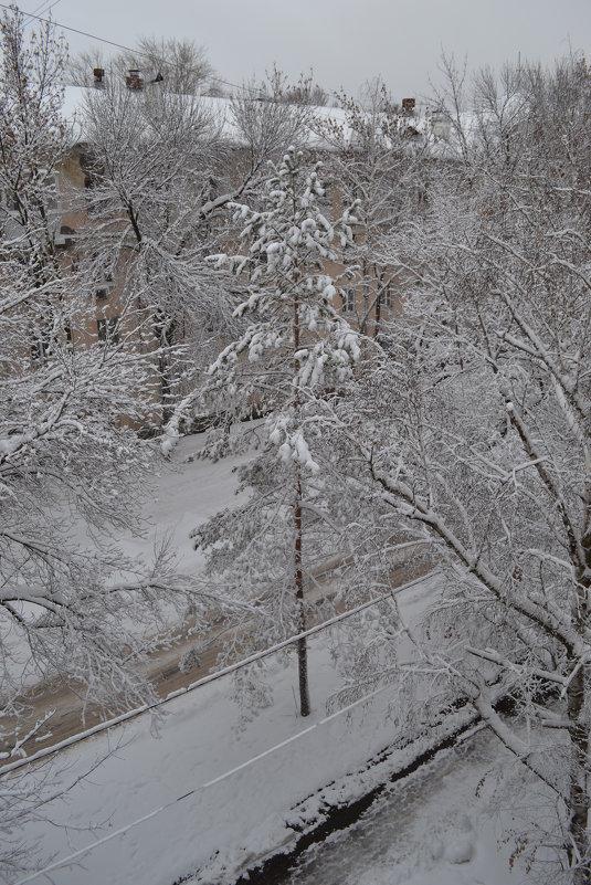 Эх зима - Анатолий Евстегнеев