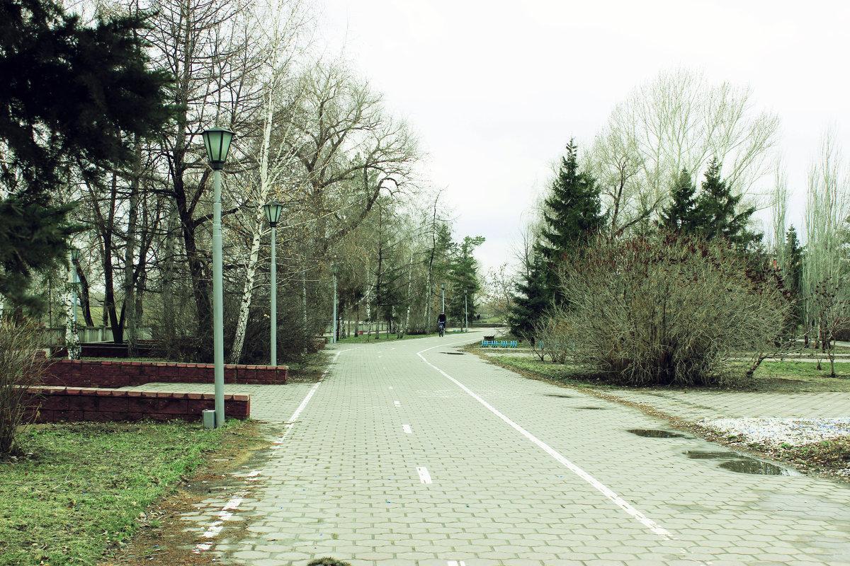 ЭХ, дороги  ............... - раиса Орловская