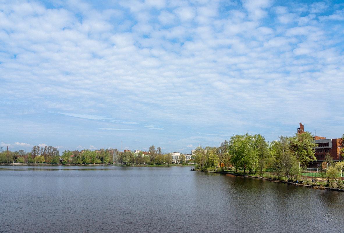 Разлив весенний 4 - Виталий