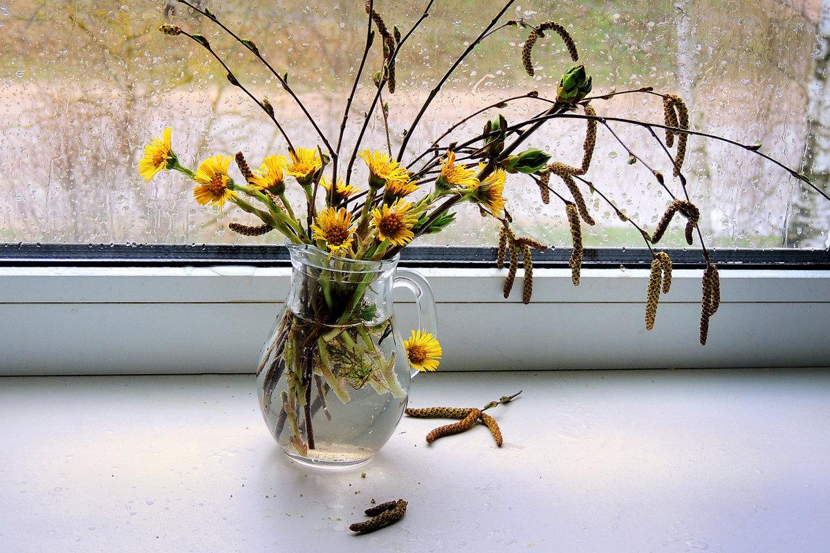 А за окном весенние дожди - Павлова Татьяна Павлова