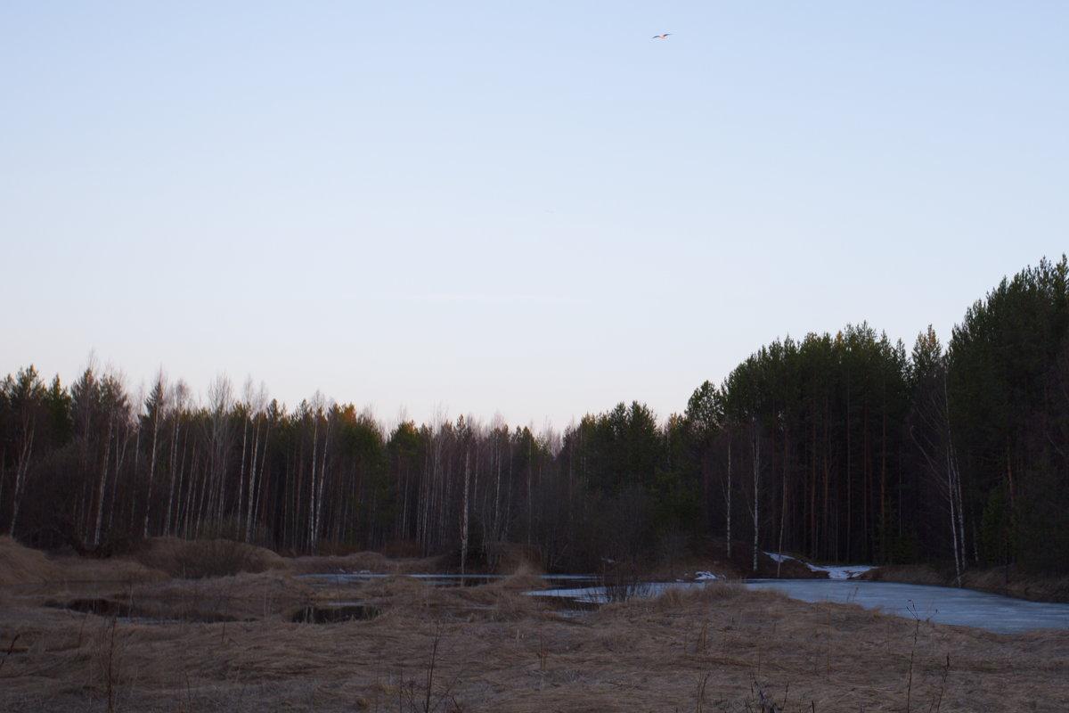 Высокий полет - Виталий Житков