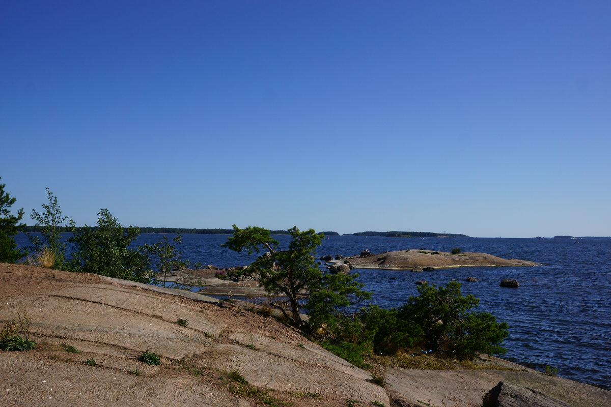 Скалистый берег Финского залива. - Vladimir