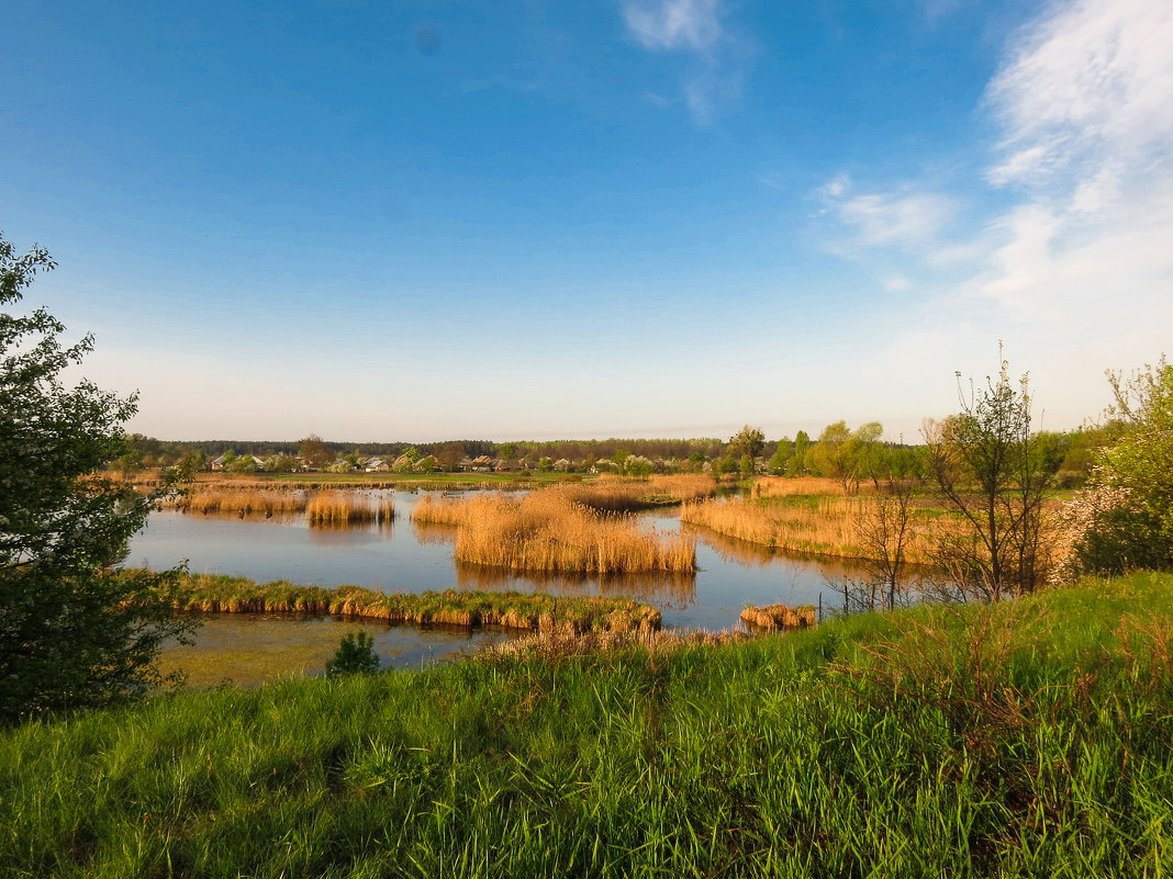 Лебединое озеро - Сергей Титаренко