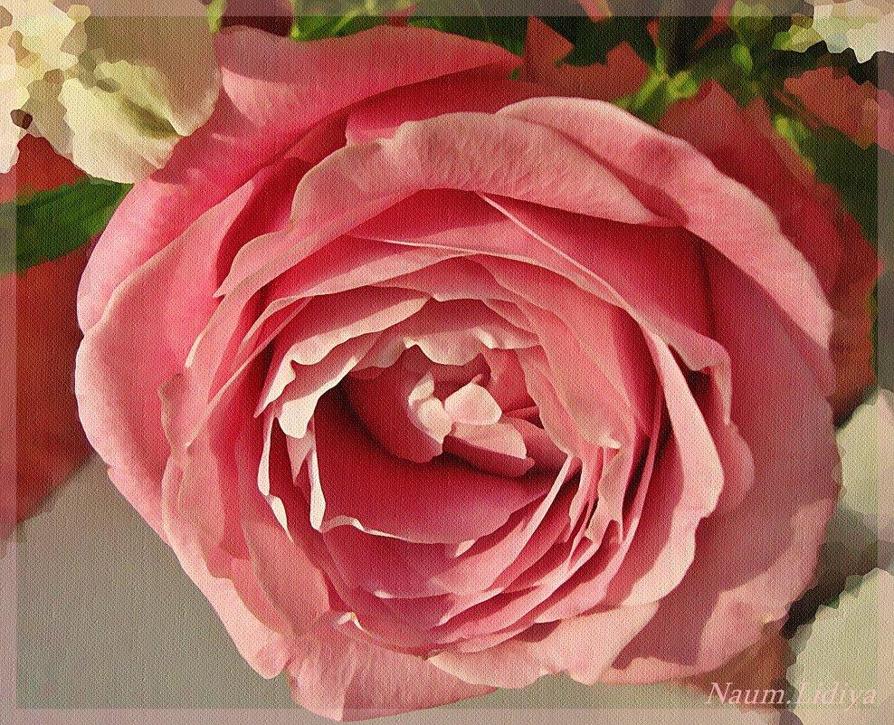 Пишу розу акварелью - Лидия (naum.lidiya)