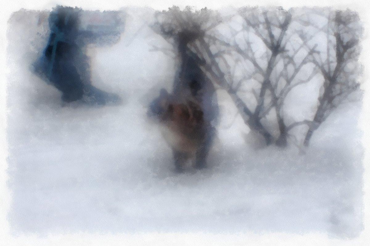 Первый снег - Ирина Сивовол
