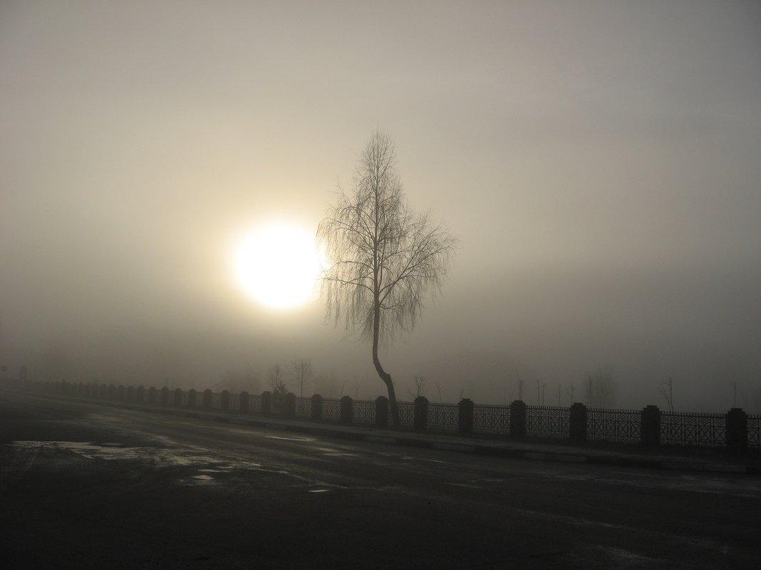 Туманное утро в ноябре - Alena Cyargeenka