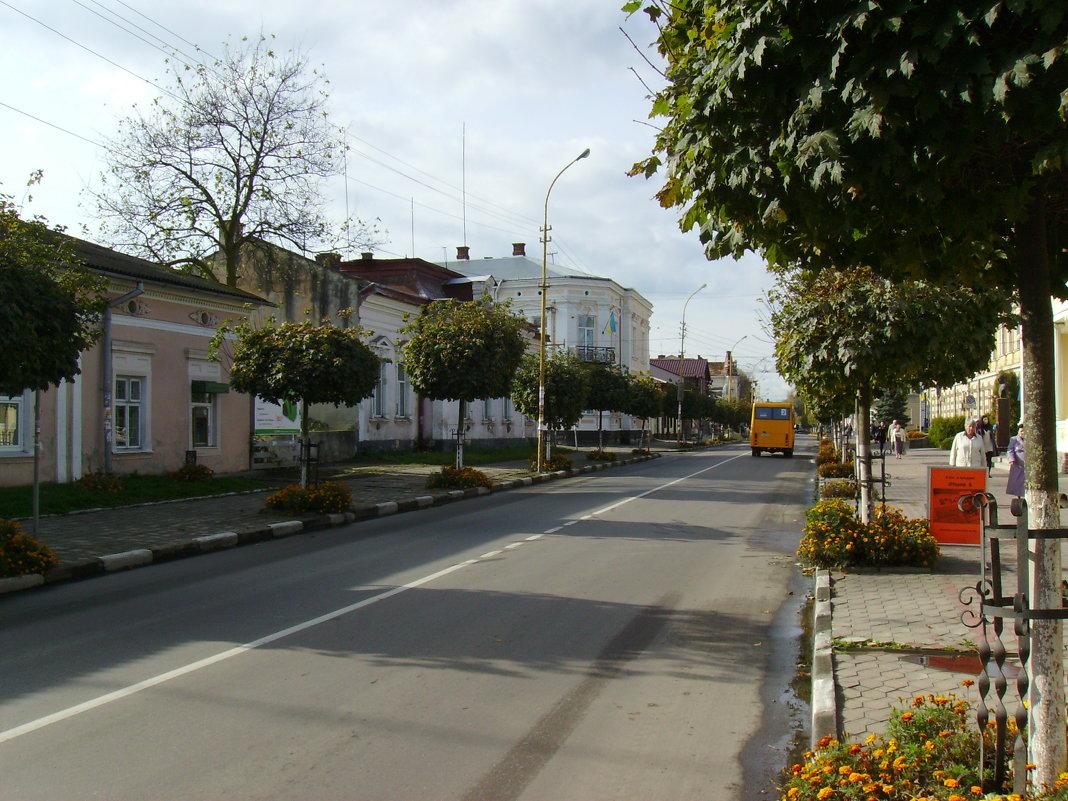В  Стрыю - Андрей  Васильевич Коляскин