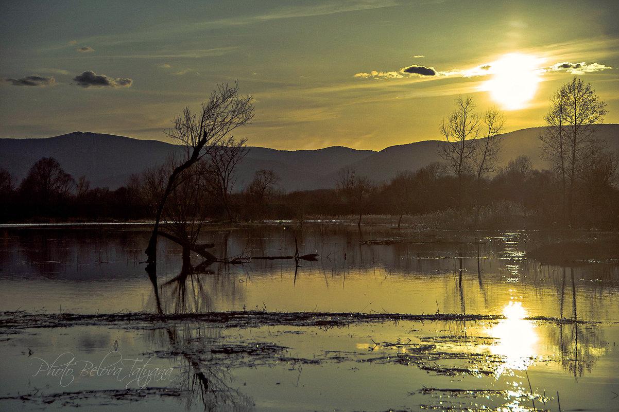 солнце - в воду - Tatyana Belova
