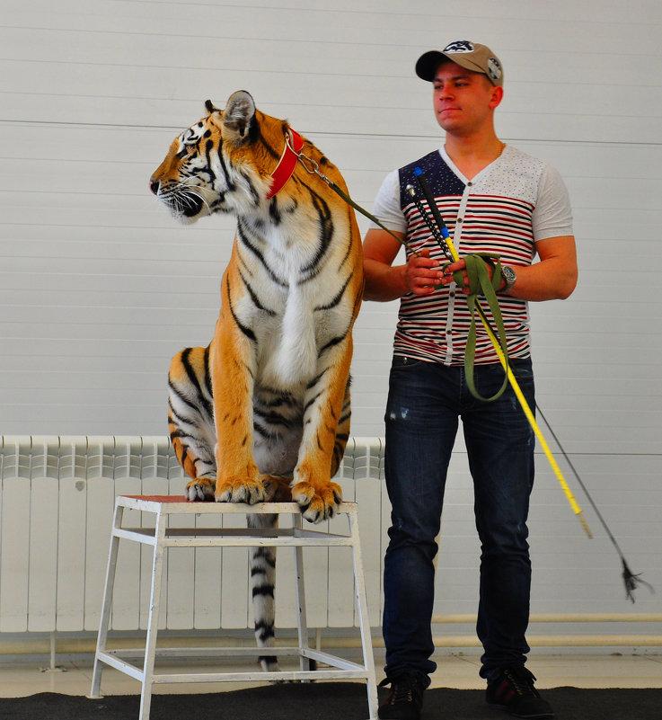 Там интереснее - Алексей http://fotokto.ru/id148151Морозов