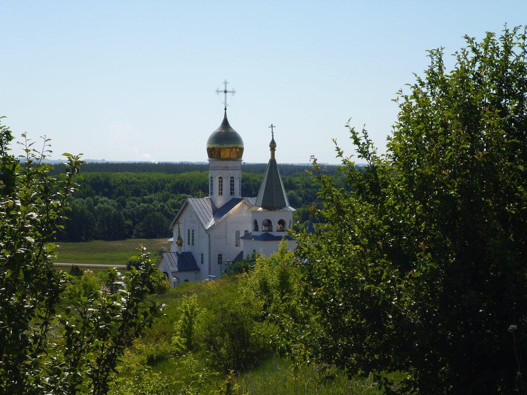 Свято-Троицкий Холковский мужской монастырь - Ольга Мишустина