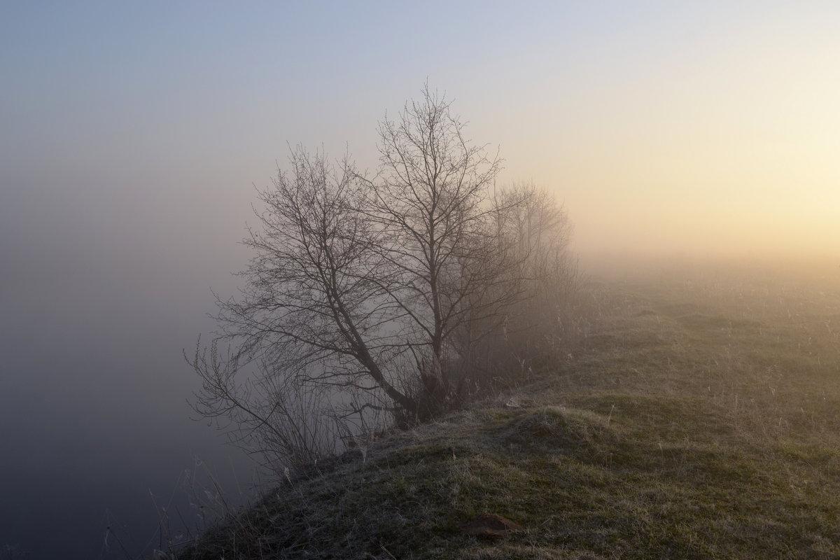 На краю земли - Денис Зорин
