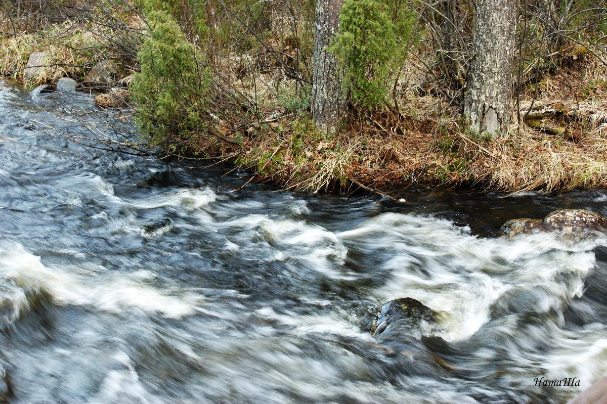 Весенние воды - Наталья