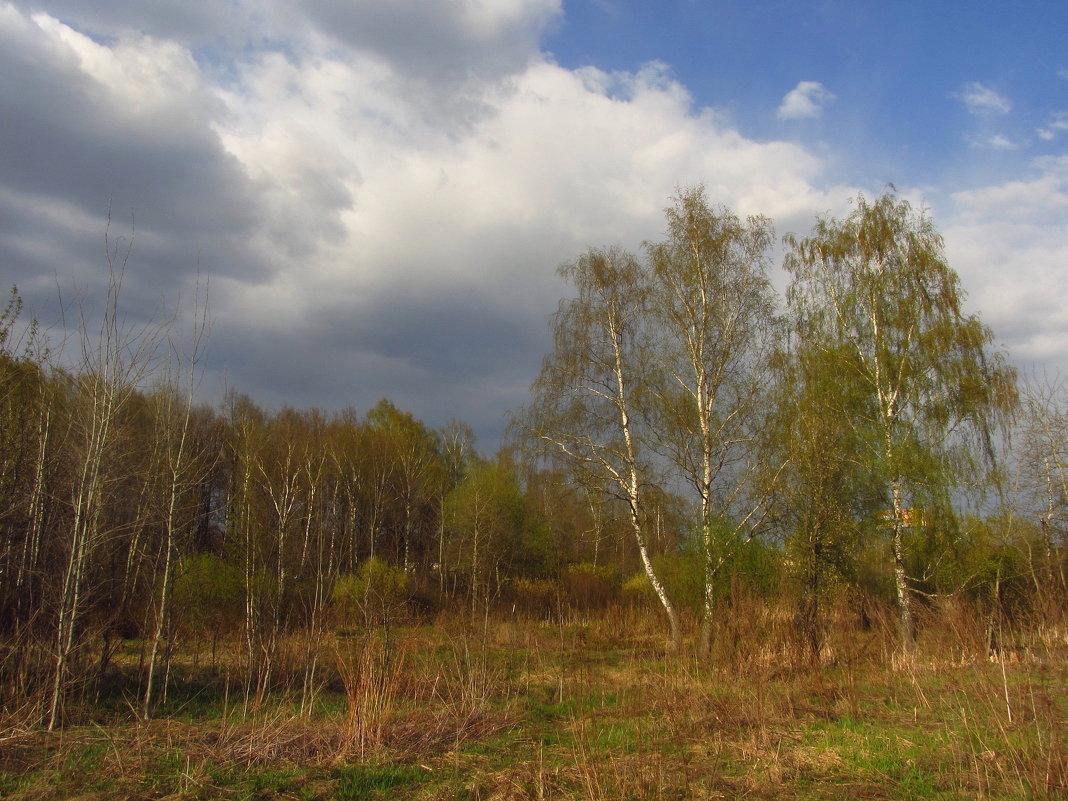 Пасха - 1 мая - Андрей Лукьянов