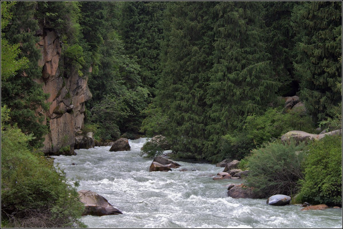 "река""Белая"" - Сергей Савич."