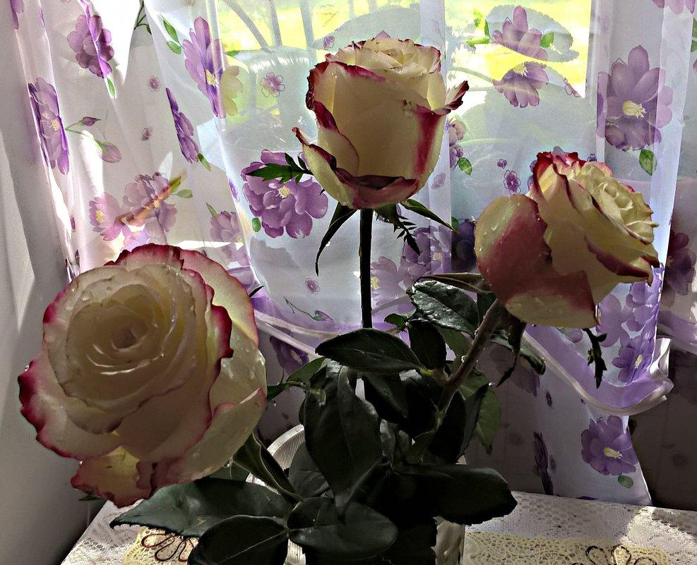 Букет из роз - Елена Семигина