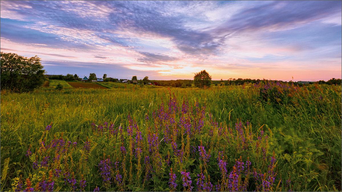 Вечерние краски деревни... - Александр Никитинский