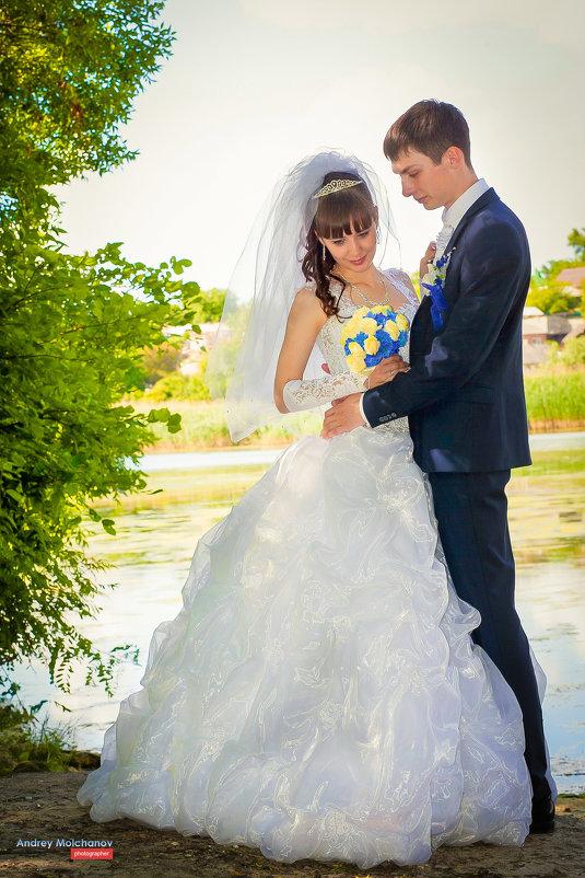 Свадьба наташи и Кирилла - Андрей Молчанов