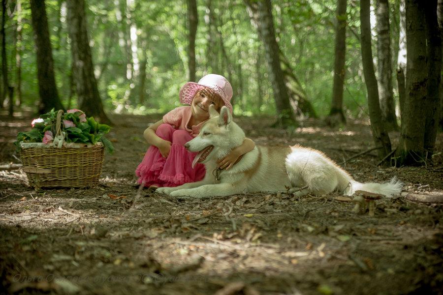 Красная шапочка и ее друг маленький волк) - Ольга Осипова