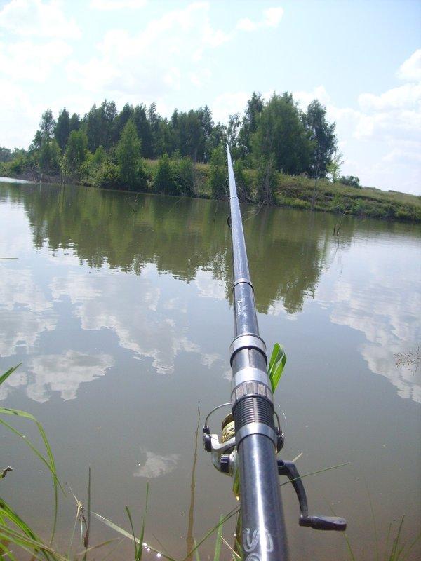 балашов прогноз рыбака