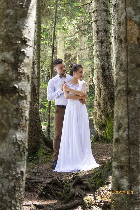 Свадьба Ярослава и Светланы - Елена Полякова