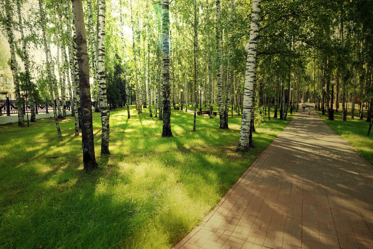 В парке - Михаил Рехметов
