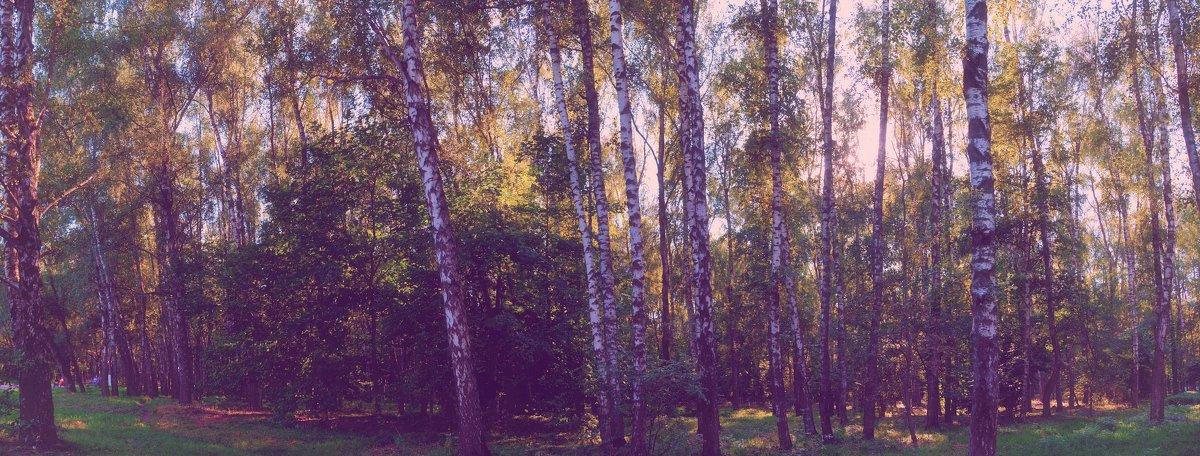 Ностальгия - Елена Чижова