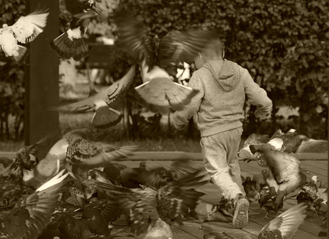 мальчик и голуби 2 - Evgen Polyakov