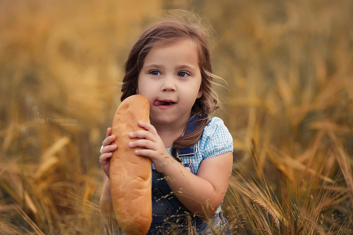 Хлебные поля - Ольга Дворянкина