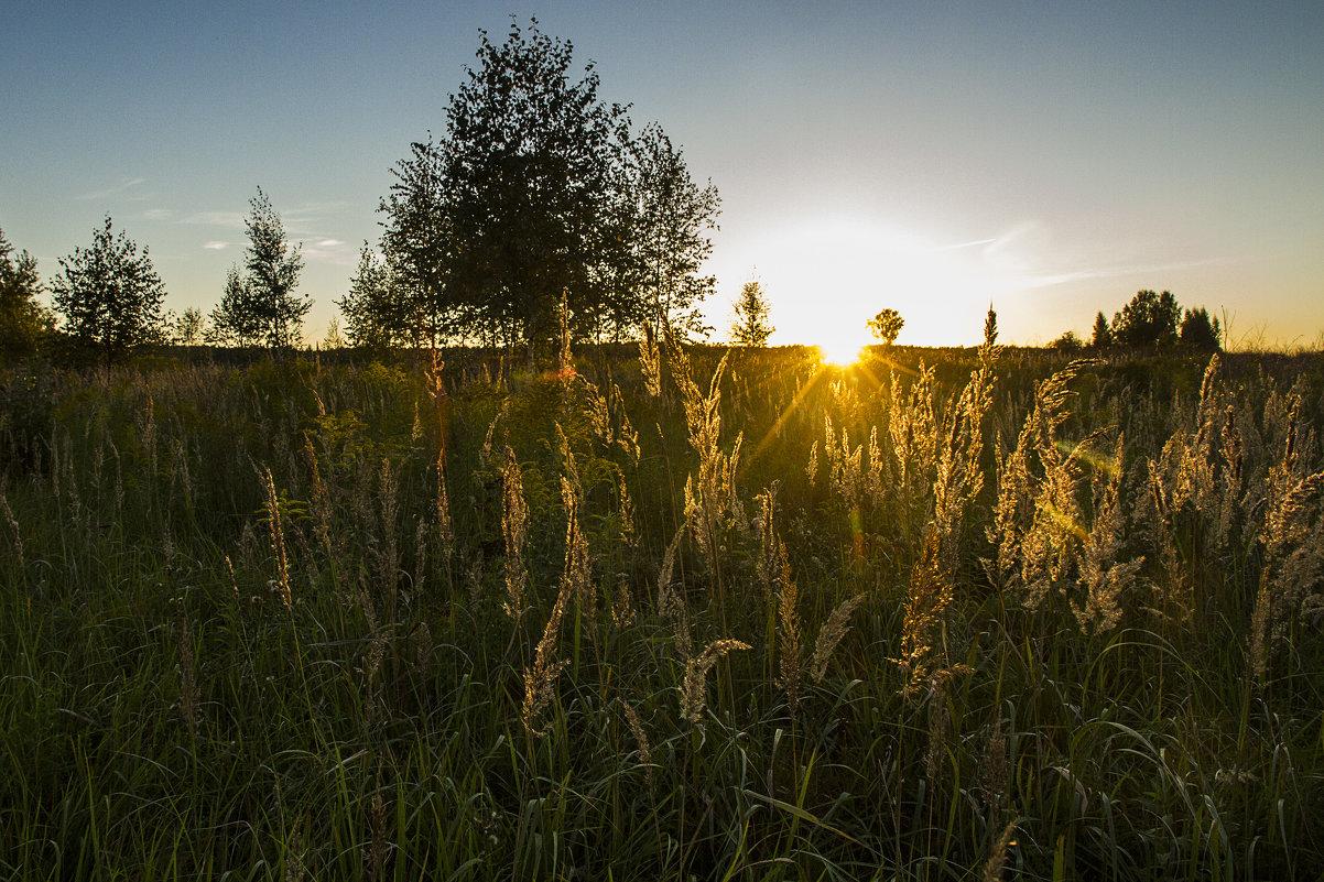 Последние дни августа - Юля Колосова