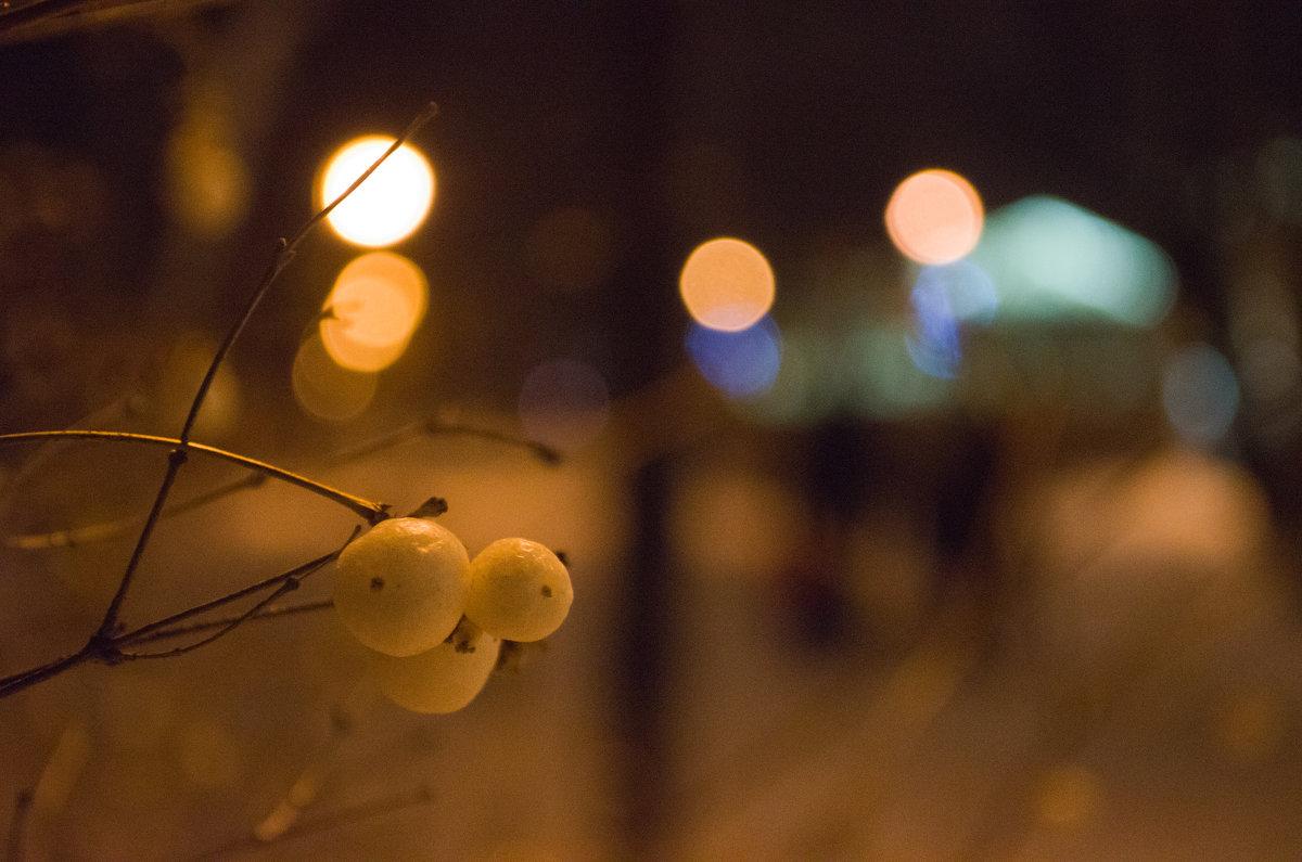 Ягоды зимой - Станислав Гераськин