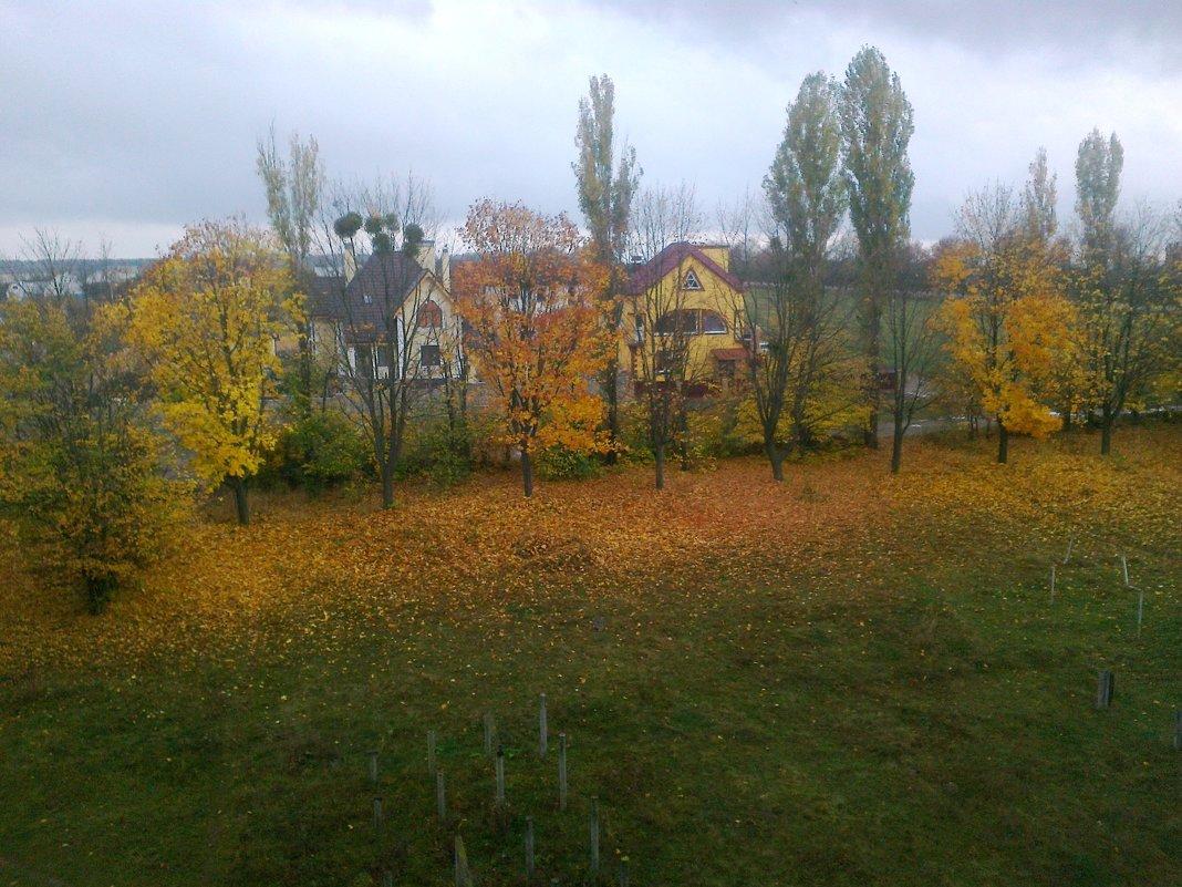 Осень из окна - Lera Yurievna