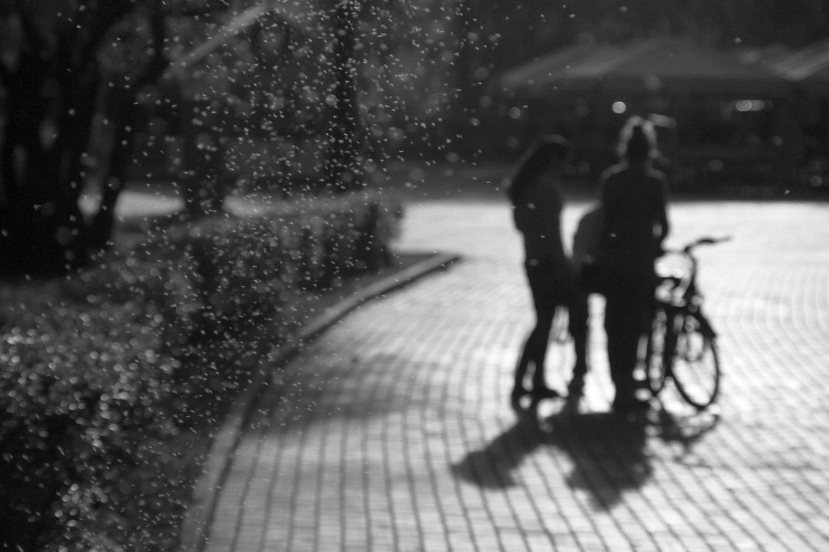 Вечер. Измайловский парк - Victor Volochinkov