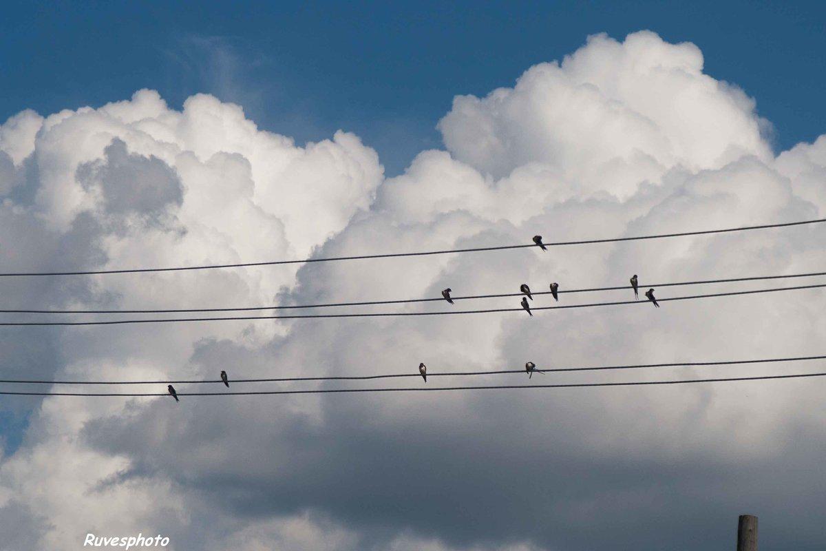 Музыка облаков. - Руслан Веселов