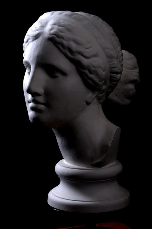Venus de Milo - Станислав Гераськин