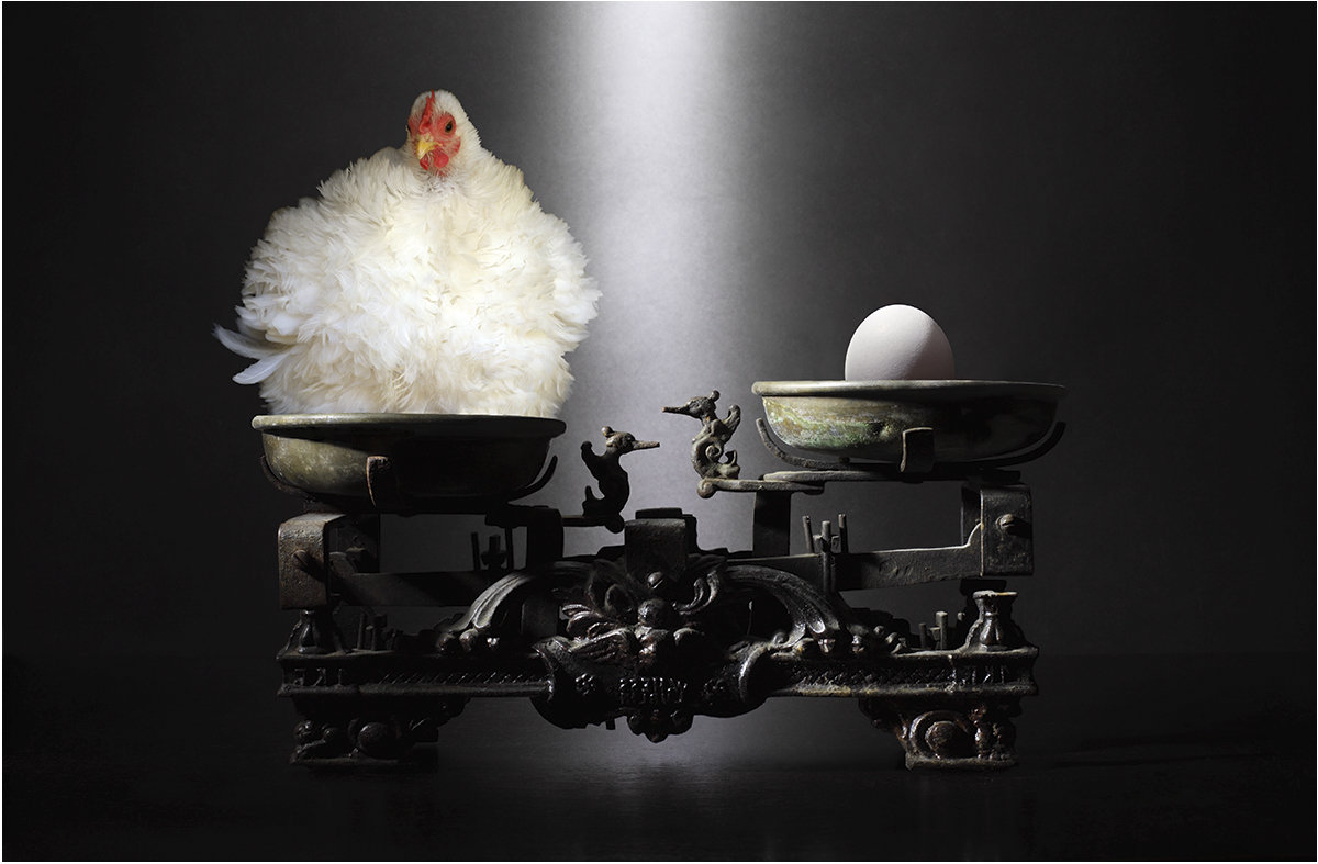 Яйцо или курица? - Виктория Иванова