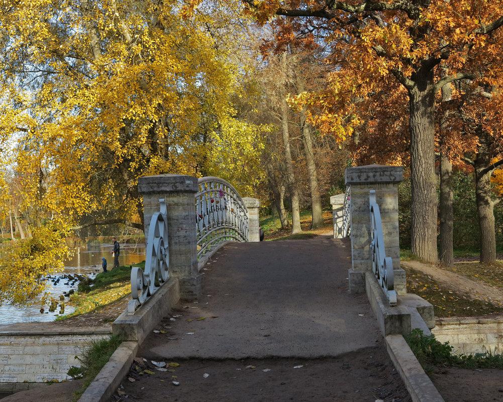 Осень в Гатчинском парке - Наталья
