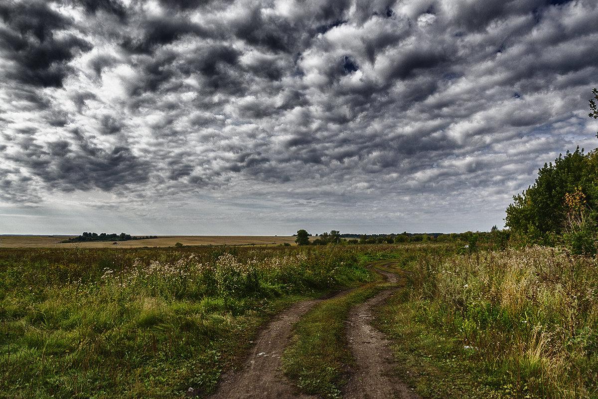Дорога в поле - Sergey Kuznetcov