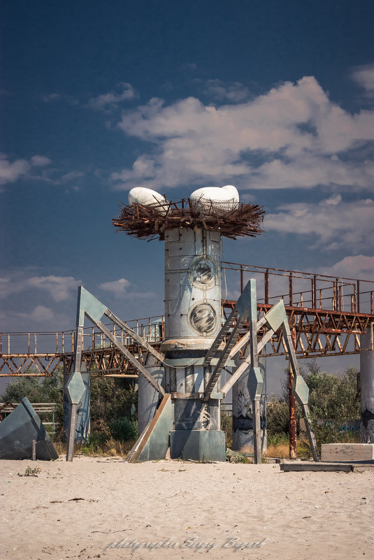 гнездо - Sergey Bagach