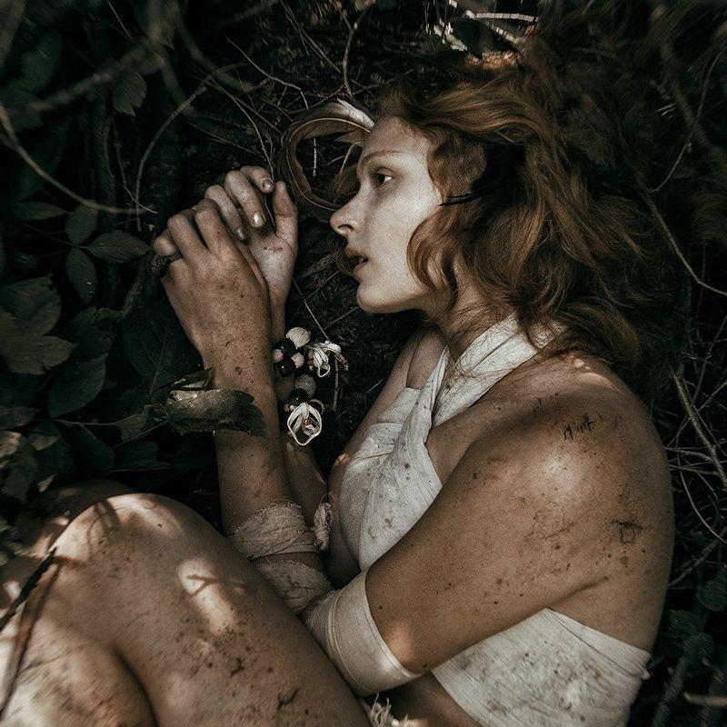 Спящий лес - Violetta