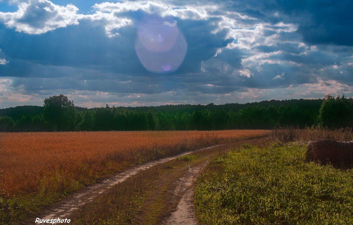 Дорога из леса - Руслан Веселов