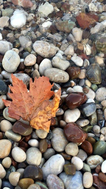 Осень - Mila