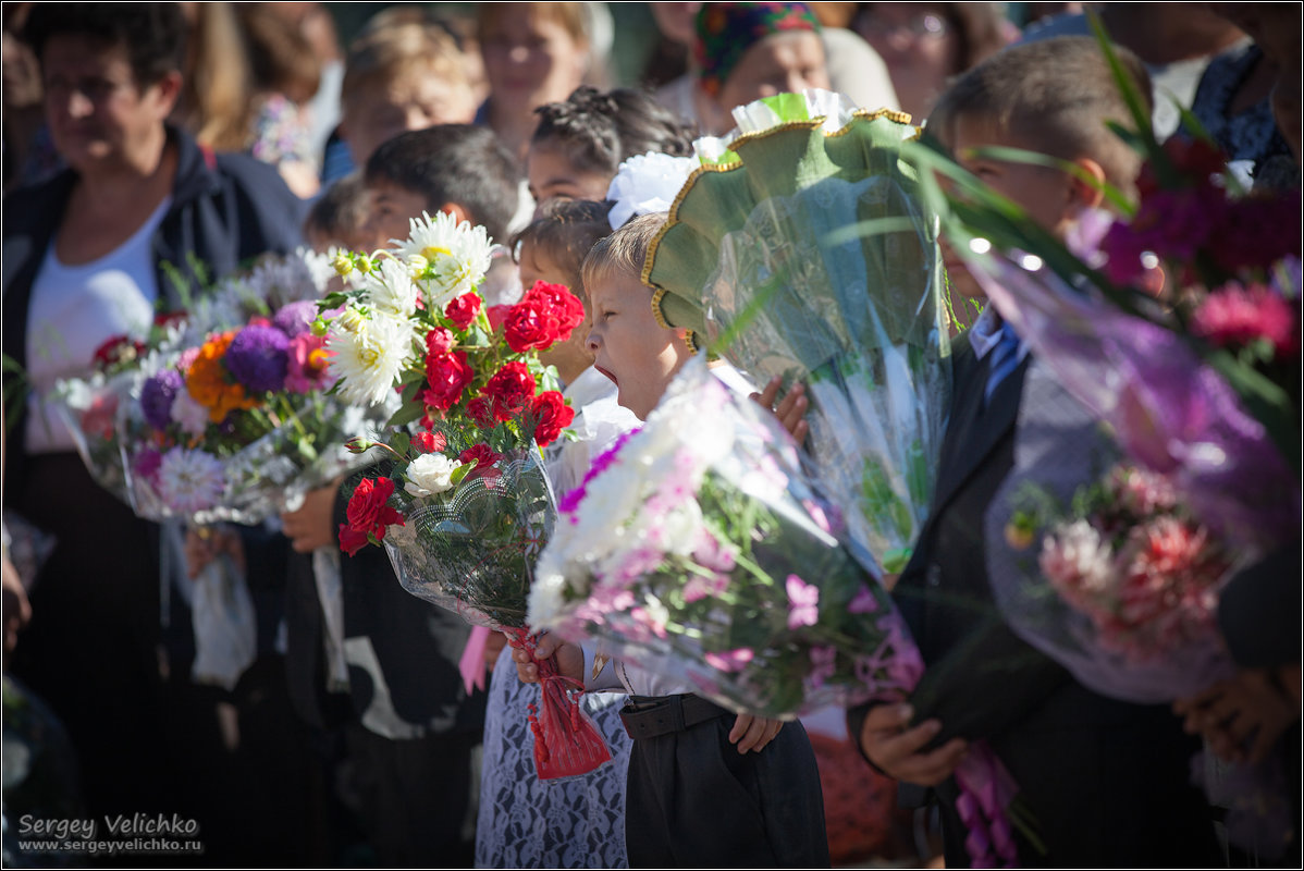 Зевающие на линейке) - Сергей Величко