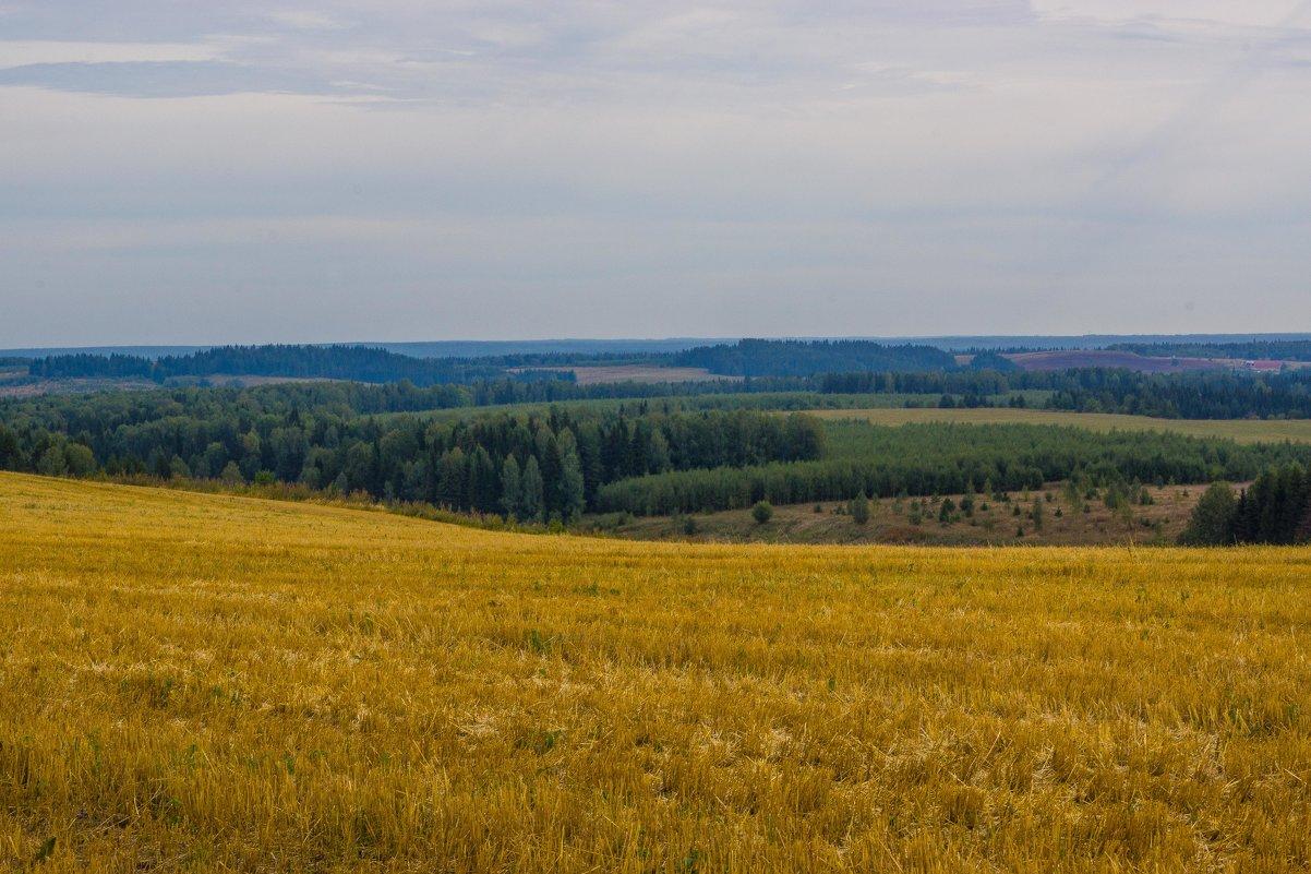 Осенне поле у деревни Ковриги - Валерий Симонов