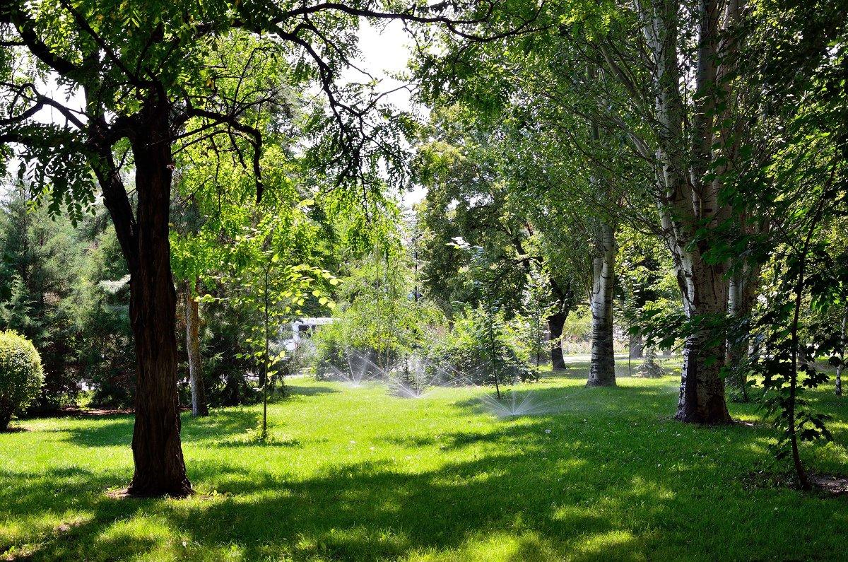 В парке - Александр