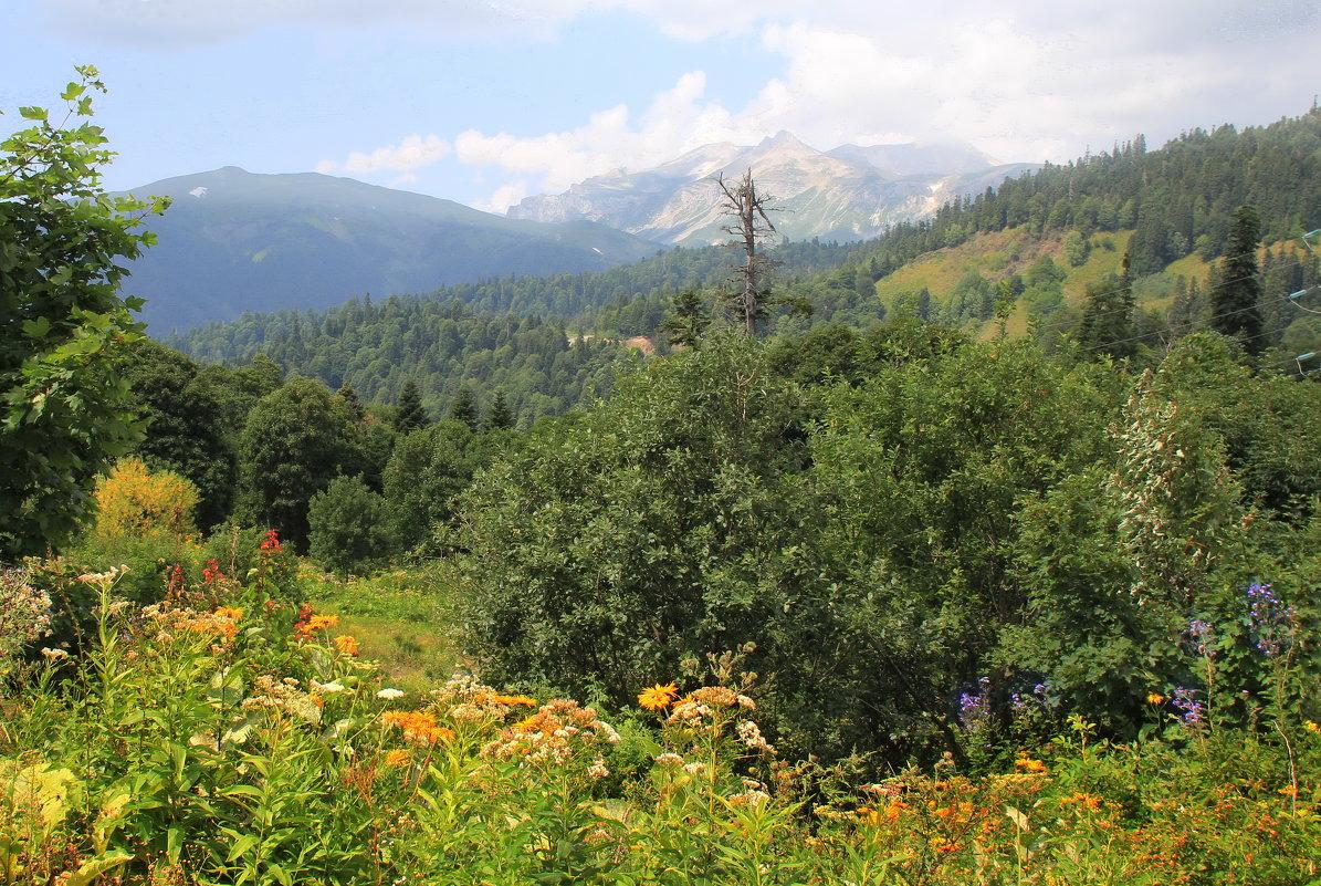 В горах Адыгеи - Галина Новинская
