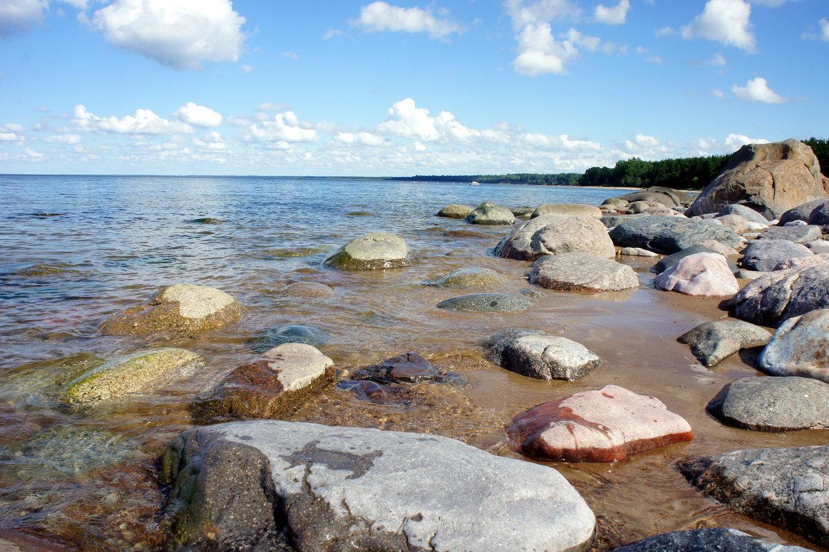 Вид побережья - Елена Павлова (Смолова)