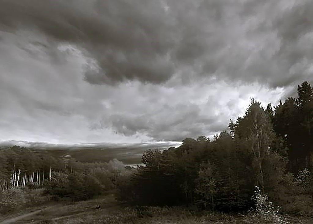 Перед дождём - Дмитрий Сажин